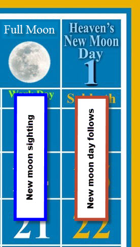 New moon day follows the day after the sighting of the full moon